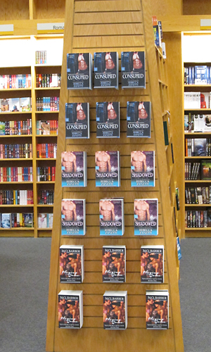 Check out all those abs on display! It's a tower of manly goodness in the romance section at BAM in York, Pennsylvania.