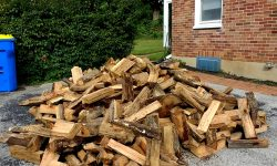 Seasoned oak firewood just waiting for its chance to heat the house