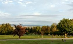 Graveyard, autumn morning